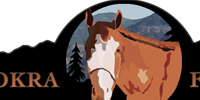 Horse Ranch Logo
